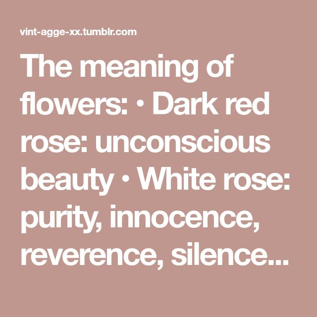 The meaning of flowers: • Dark red rose: unconscious beauty • White rose: purity, innocence, reverence, silence • Pink rose: grace, happiness, gentleness • Yellow rose: joy, friendship, the promise of...