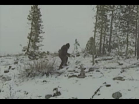 The Clearest Images of Bigfoot Ever Captured (Compilation Pt. 27)