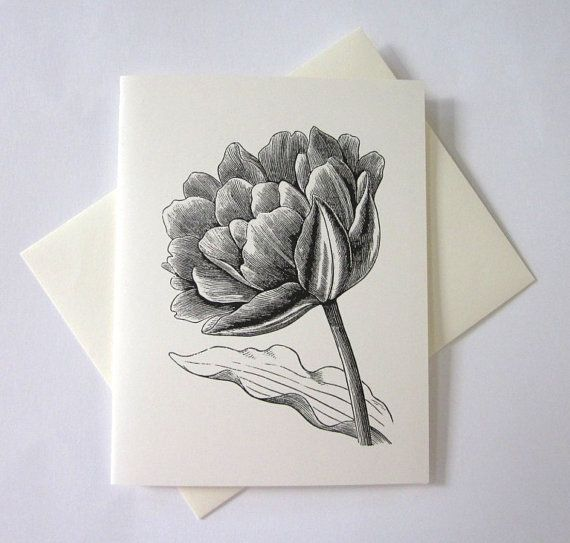 TulipFlower Cards Set of 10 in White or Light by PetitePaperie, $10.00