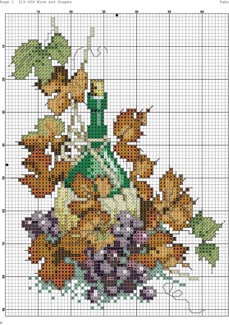 wine and grapes-3