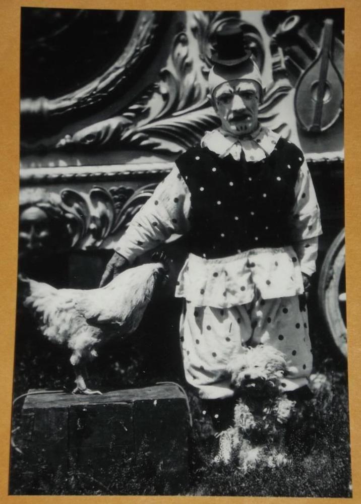 Live anybody clown midget monkey