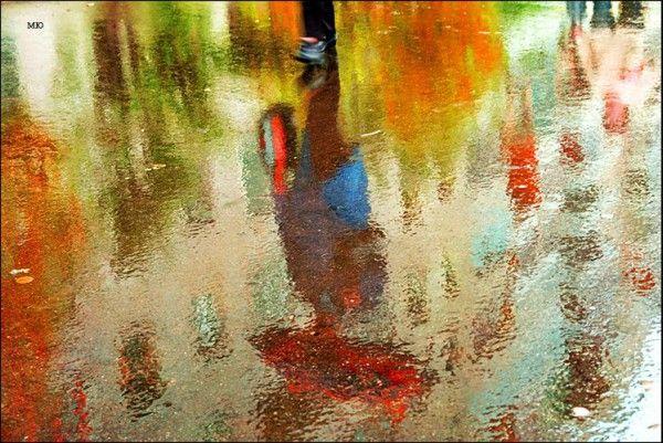 дождя фотография