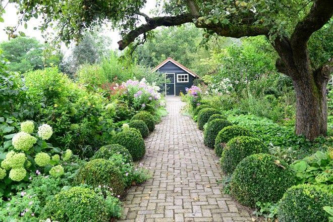 Best 25 herbaceous border ideas on pinterest cottage for Herbaceous border design examples
