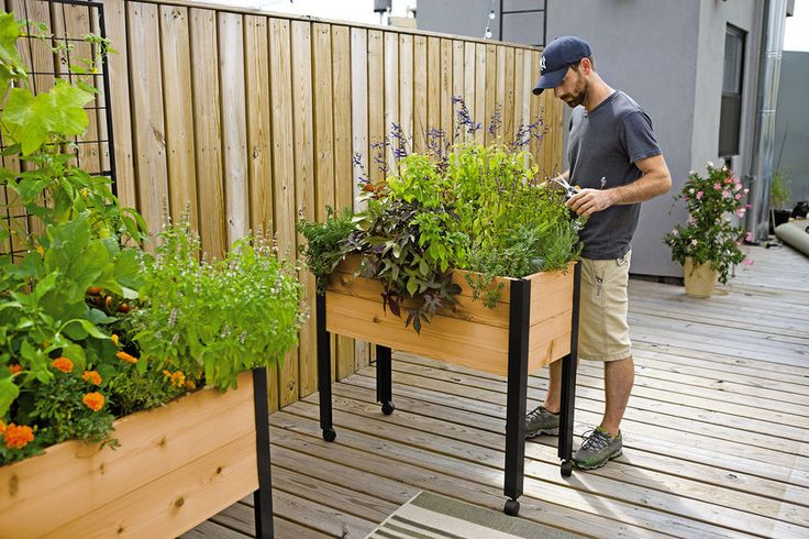 M s de 25 ideas incre bles sobre jardineras guindantes en pinterest diy raised garden beds Keter easy grow elevated flower garden planter