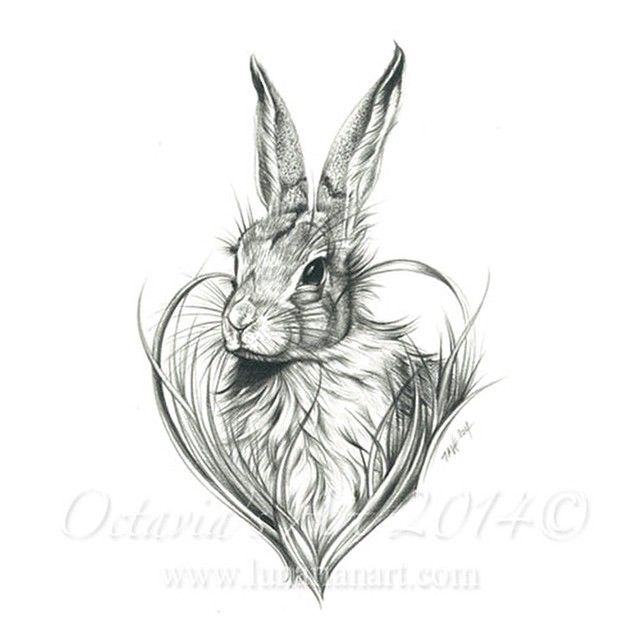 Cute Rabbit All finished and scanned in prepared print  #rabbit #rabbitart #rabbittattoo #wildanimals