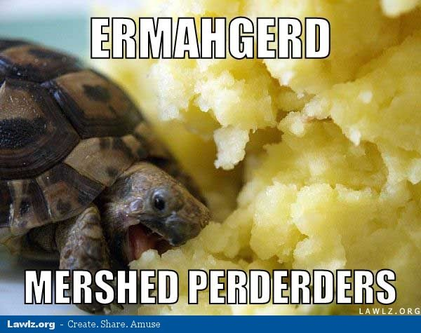ermahgerd mashed potatoes meme