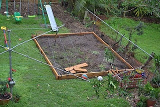 Creation of the vege patch... grass removed, sides up.