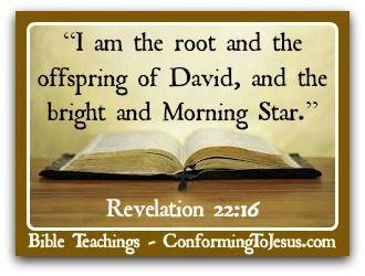 REVELATIONS 22:16 (MORNING STAR)