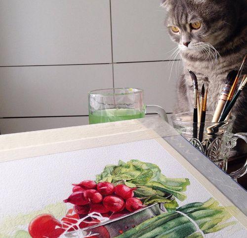 Рисунки акварелью: фрукты, овощи и ягоды — в холодильнике и на бумаге