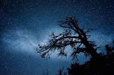 Великолепные пейзажи под куполом звездного неба. Фото