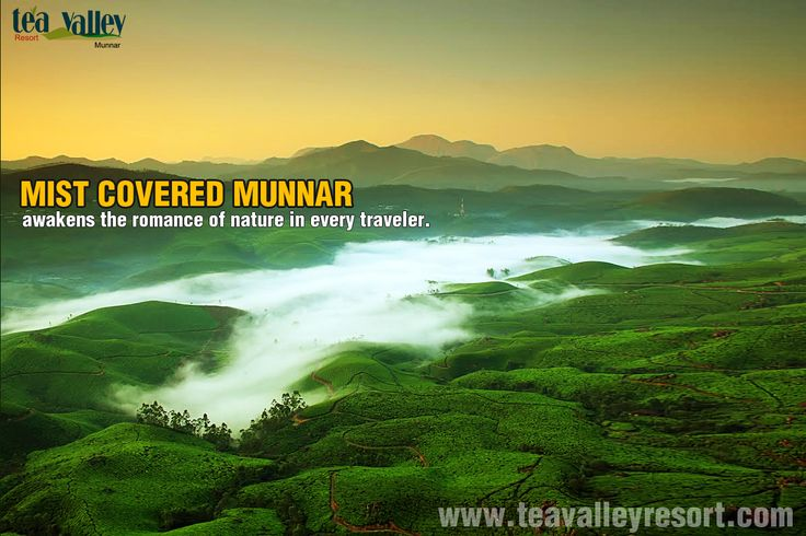 Visit Munnar this Winter to bring out the true nature lover within you.Hurry and book your cottages now.
