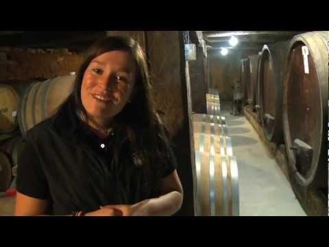 Tour of the Best's Great Western Underground Cellars