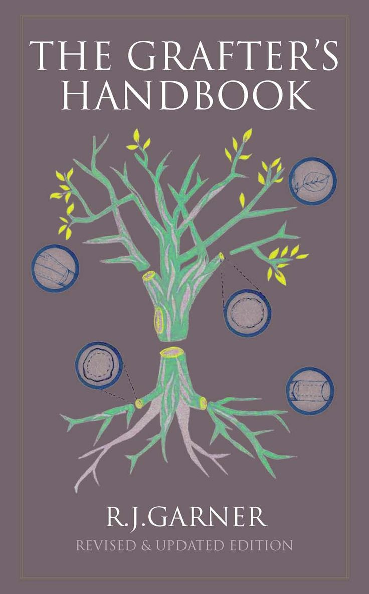 How to graft the perfect fruit tree: 5 grafting techniques from The Grafter's Handbook by R.J. Garner