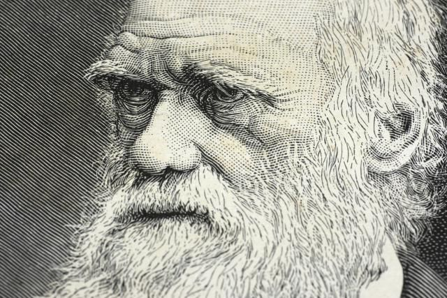 5 Interesting Facts About Charles Darwin: Did You Know...?