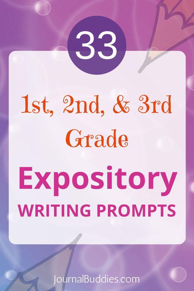 Expository essay ideas