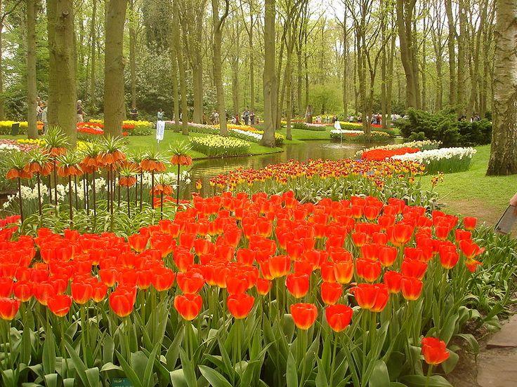 Όμορφος κόσμος, μαγικός: Υπέροχοι κήποι του κόσμου