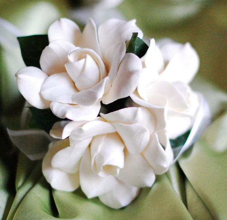 bridesmaids carried fans of white gardinias, tuberoses & baby magnolias on a warm summer afternoon....