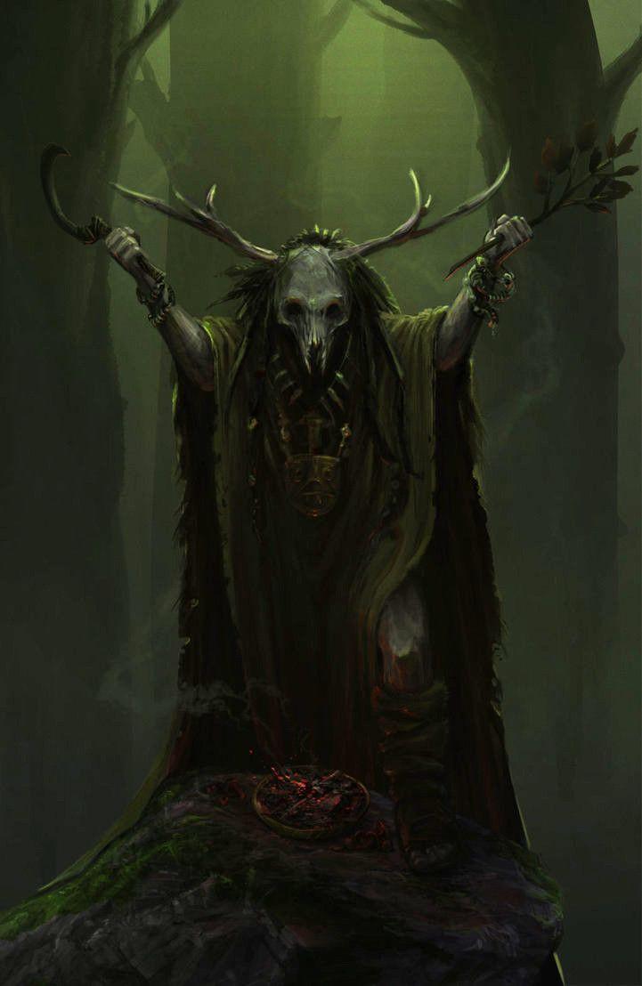 Druid by Roy Steur
