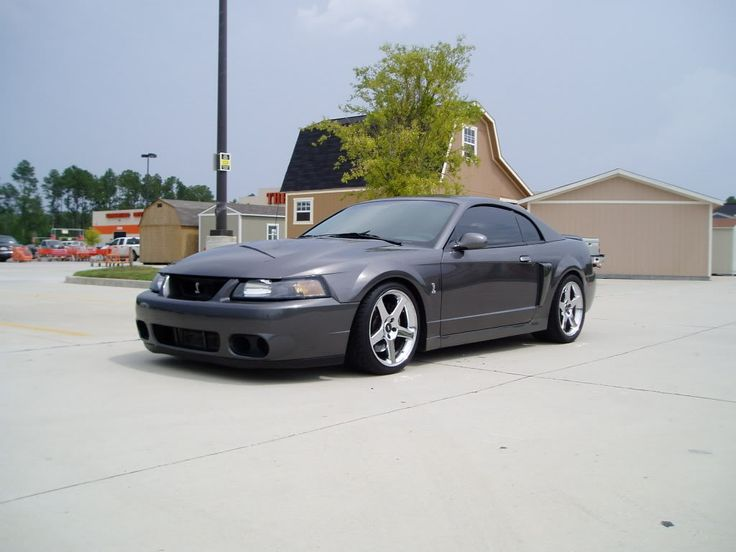 best 25 mustang cobra for sale ideas on pinterest shelby gt500 for sale cobra for sale and. Black Bedroom Furniture Sets. Home Design Ideas
