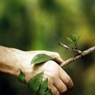 #Naturaleza #cuidala #Protegela #reservas #Mundo