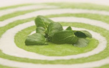 Cream of rooster potato and watercress soup recipe. Starter recipes from Cookipedia. You can see a list of stockists of http://www albert-bartlett co uk/products/rooster_detail Albert Bartlett Rooster potatoes on their http://www albert-bartlett co uk/products/where_to_buy website. You can also buy their seed potatoes, should you wish to grow your own.