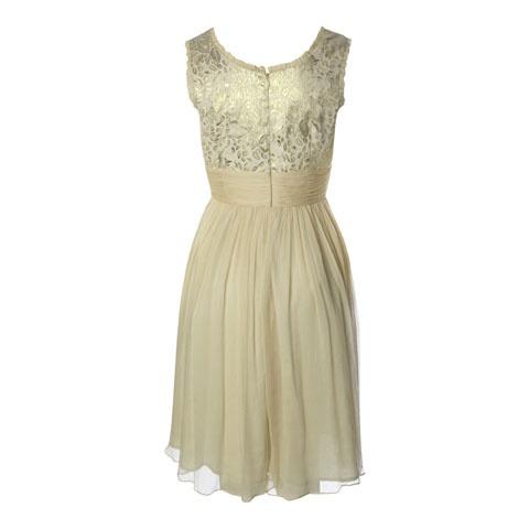 Nádherné dámské šifónové šaty mají krásně nařasený střih se širokými ramínky a kulatým výstřihem. Živůtek zdobí zlatá krajka. Pod prsy jsou šaty staženy do široké stuhy. Zapínají se vzadu na zip