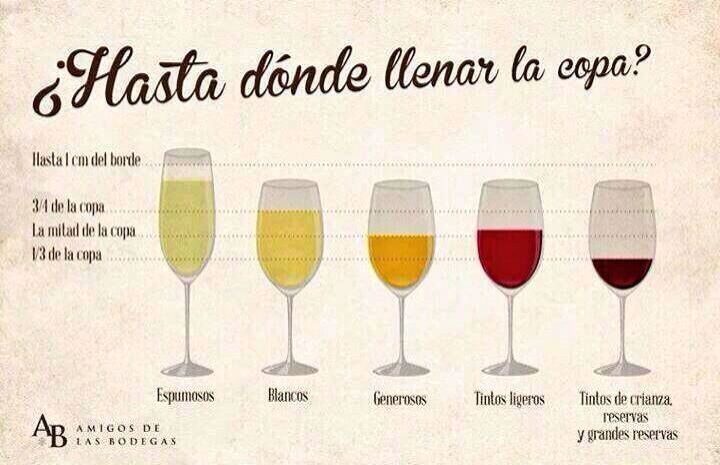 Pin by ana cienfuegos on wine vino pinterest for Tipos de copas