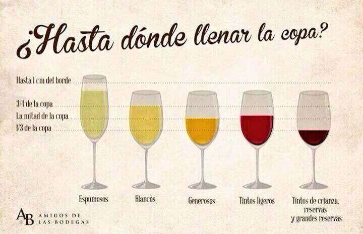 Como utilizar una copa y para que tipo de vino