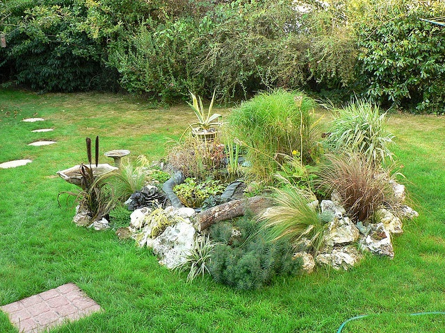 250 best rockeries images on pinterest gardens plants for Cheap pond ideas