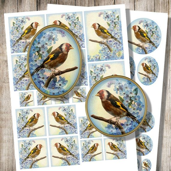Goldfinch with Forget Me Nots, Digital Collage Sheet, Printable Decoupage Set, Spring Bird, Digital Download, Bird Jewelry Images