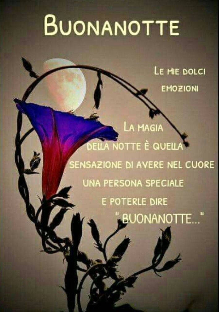2218 Best Images About Buonanotte On Pinterest Frase