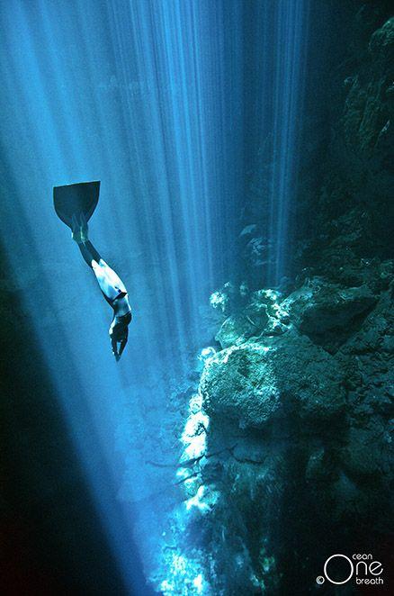 freediving dans les cenotes du yucatan 8   Freediving dans les Cénotes du Yucatan   plongee photo image freediving Eusebio Saenz de Santamar...