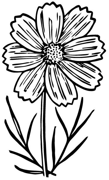 Free Vector Art: Cosmo   Images from Ephemeraphilia.com ...