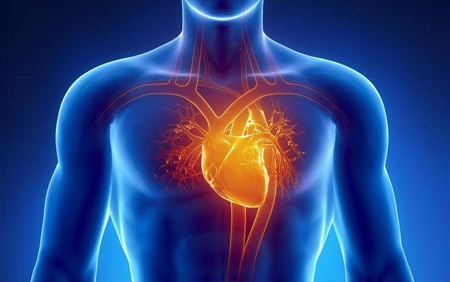 Δημιουργήθηκε ο πρώτος ώριμος ανθρώπινος καρδιακός μυς από βλαστοκύτταρα