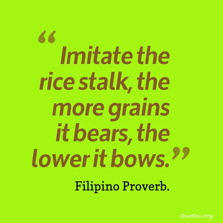 Imitate the rice stalk, the more grains it bears, the lower it bows – Quote©