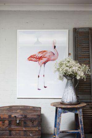 pennyfarthingdesignhouse - flamingo
