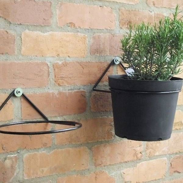 Two Plant Pot Ring Mounted On The Wall Hanging Plants Outdoor Hanging Plants Diy Hanging Plants