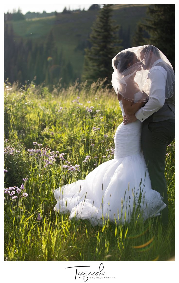 Alpine flowers, Wedding photos at the top of a mountain, sunset photos, Photography by Taqueesha