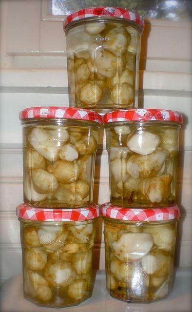 Topinambur Suddividere grosse radici in porzioni più piccole. mettere ammollo in acqua fredda per 3 ore. Portare ad ebollizione: 1 di aceto, 1 acqua, 1 ½ c. zucchero, ¾ cucchiaino di semi di senape, 1 spicchio d'aglio, ½ c. sale, 1/4 di cucchiaino. peperoncino tritato . Mettere in vasetti sterilizzati e coprire con il liquido bollente, conservare in frigorifero. Pronto in 3 settimane.