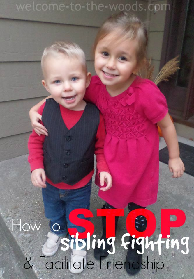 Facilitate Sibling Friendship and stop the fighting with these 5 Tips!