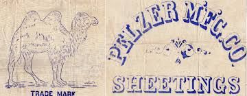 Image result for Pelzer cotton mill workers