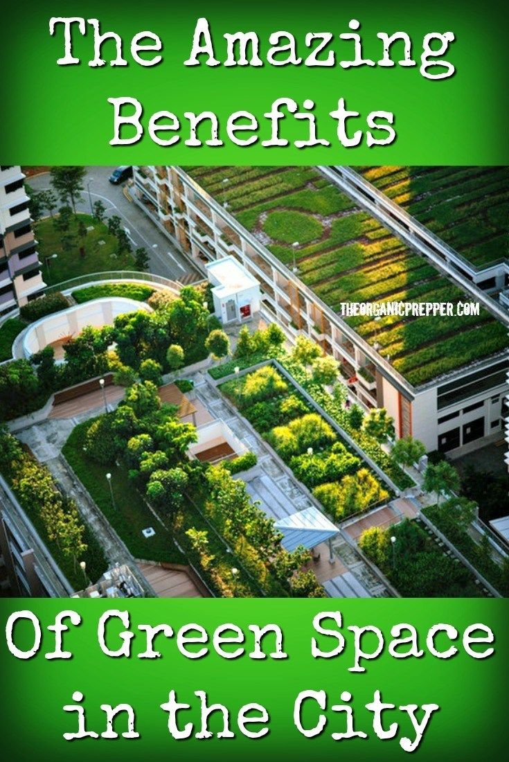 The Amazing Benefits Of Green Space In The City Green Space