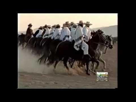 Discovery Channel   El Caballo Peruano de Paso