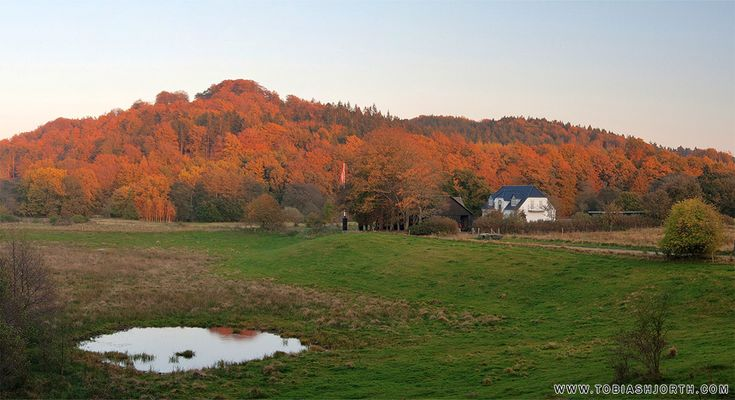 In the colors of autumn of Tobias Hjorth