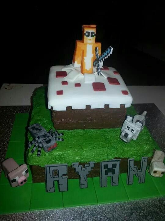 96 best cakes images on Pinterest Minecraft party 8th birthday