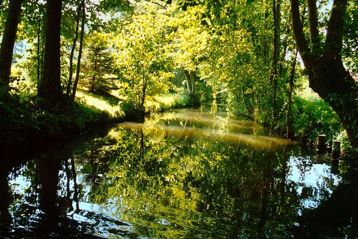 Fließ bei Burg (Spreewald), 2007
