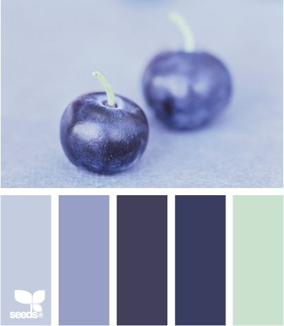 currant blue #ColorpaletteforKCH