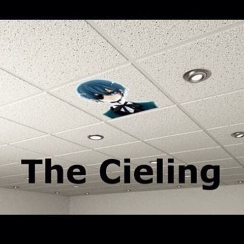 Cieling... I AM DOING THIS TO THE ART ROOM ABSOLUTELY NO CHOICE I WILL HAVE MY CIELING