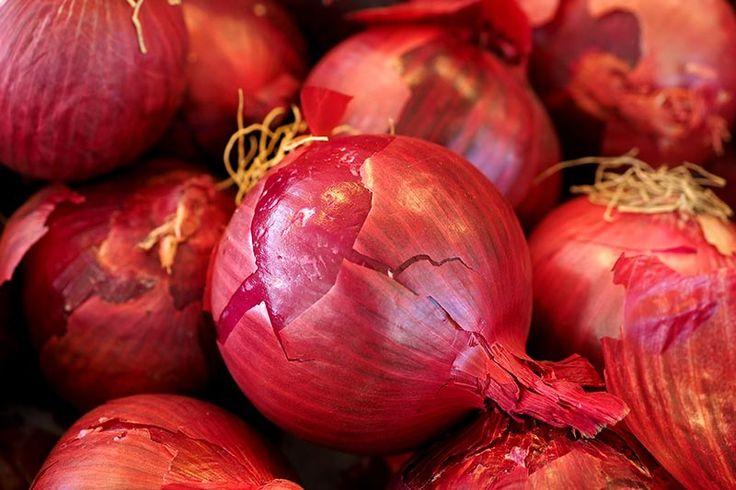 Zwiebelsorten rote Zwiebel pflanzen