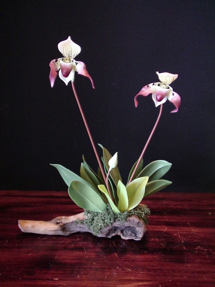 poly clay artists orchids | polymer clay orchids | Daily Art Muse